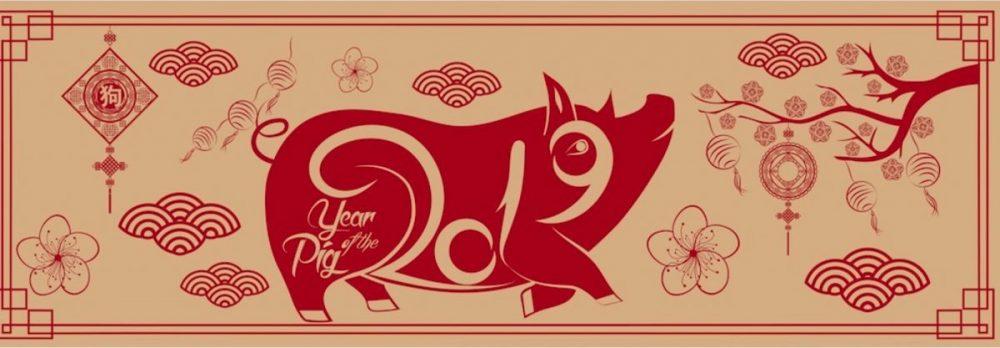 Vorschau auf 2019… das Jahr des Erd-Schwein